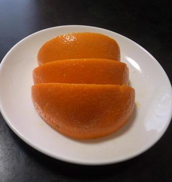 オレンジイセエビ