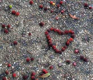 赤い実のハート