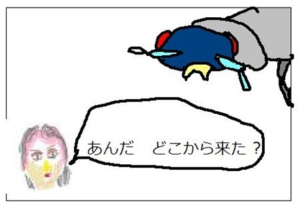 ママ刑事美雪が、ヒアリに尋問してます。