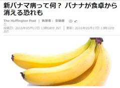 パナマ病でバナナ危機