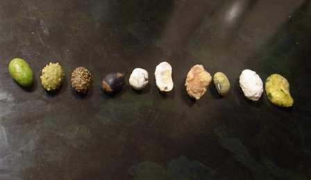 1種類ミックス豆