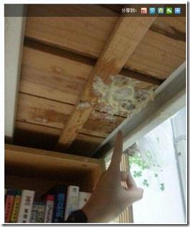 ヨーグクトが天井に
