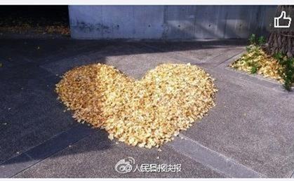 ハートの落ち葉