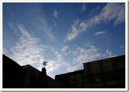 雲にもあうツリー