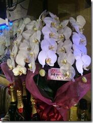 誕生日用欄の花