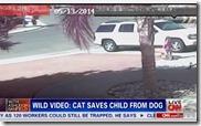 犬が子供を
